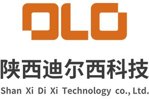 陕西迪尔西信息科技有限公司