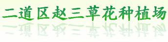 九台区卡伦赵三花卉种植农民专业合作社