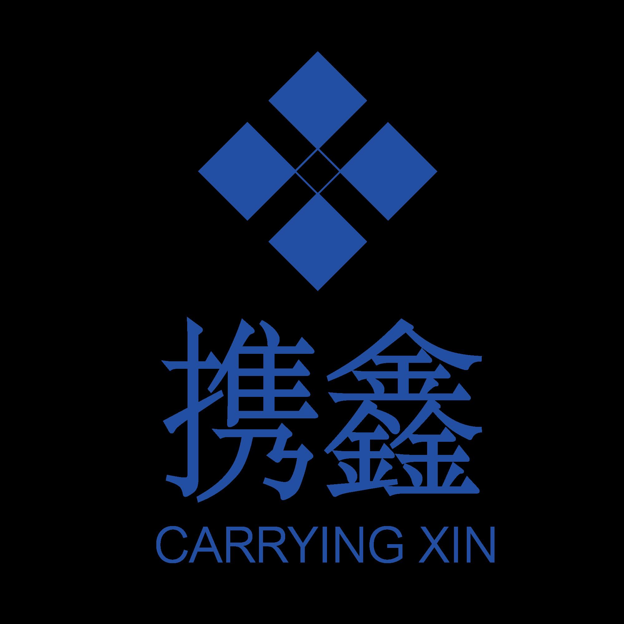 上海攜鑫信息技術有限公司