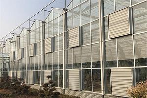 青州市迎洲温室工程有限公司