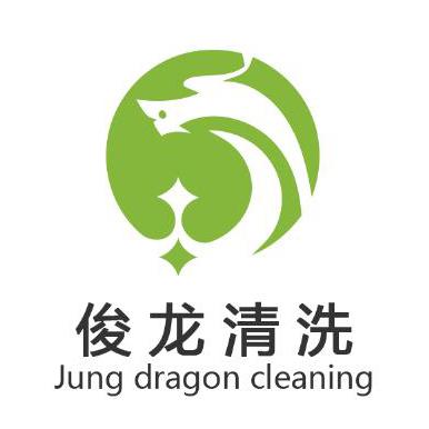 洛阳俊龙清洗服务有限公司