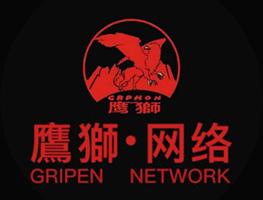 成都鹰狮网络科技有限公司