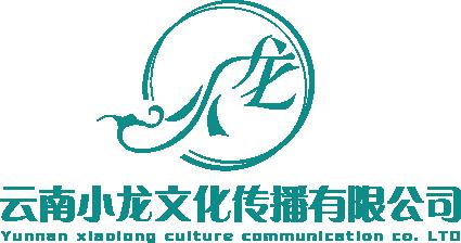 云南小龍文化傳播有限公司LOGO